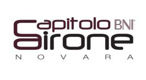 Questa immagine ha l'attributo alt vuoto; il nome del file è logo-BNI-airone-2-300x165.jpg